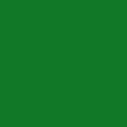 Minzgrün | RAL 6029